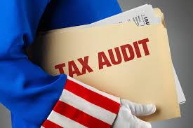 IRS Audit 2