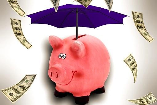 Emergency Pig w-umbrella